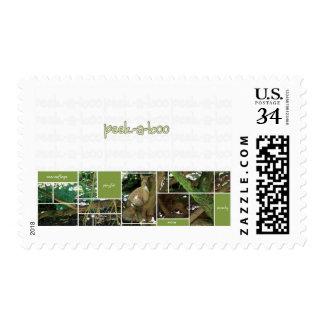 Peek-A-Boo Post Postage