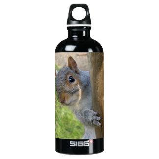 Peek-a-boo! SIGG Traveler 0.6L Water Bottle