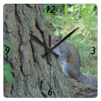 Peek A Boo Squirrel - Square Wall Clock