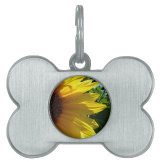 Peek A Boo Sunflower Pet ID Tag