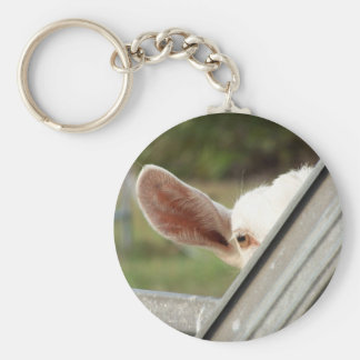 Peek a boo white goat! Cute goat waiting picture Basic Round Button Keychain