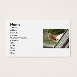 Peek a boo white goat! Cute goat waiting picture Business Card