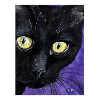 Peekaboo, gato negro en la postal púrpura de la pi