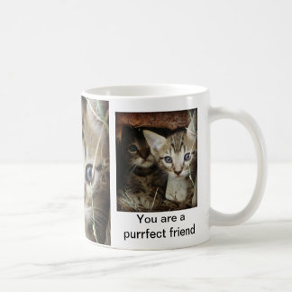 Peekaboo Kittens Coffee Mug