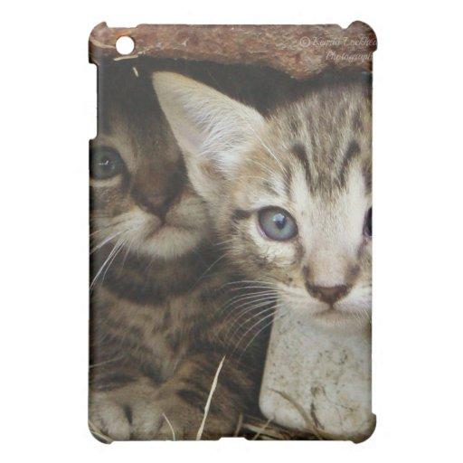 Peekaboo Kittens iPad Mini Cases