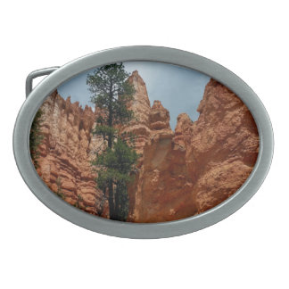 Peekaboo Loop to Bryce Point  Bryce Canyon Nationa Belt Buckle