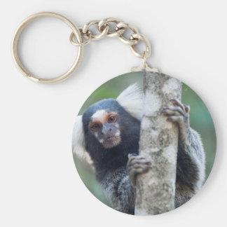 Peekaboo marmoset (Callithrix jacchus) Keychain