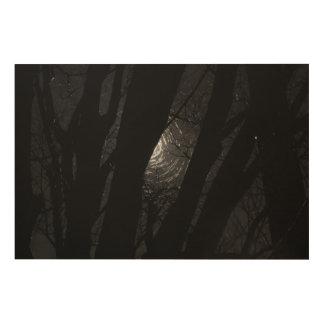 Peekaboo solar cuadros de madera