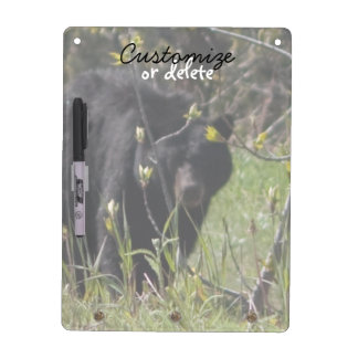Peeking Bear; Customizable Dry Erase Board