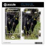 Peeking Bear HTC T-Mobile G2 Decals