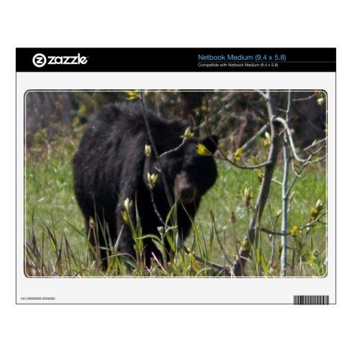 Peeking Bear Netbook Decal