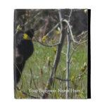 Peeking Bear; Promotional iPad Folio Cover