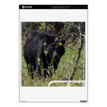 Peeking Bear PS3 Slim Skin