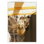 Peeking giraffe card