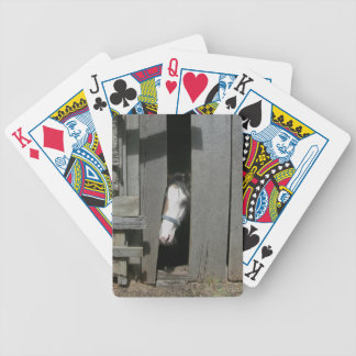 Peeking Horse Bicycle Playing Cards