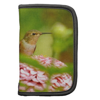 Peeking Hummingbird Organizer