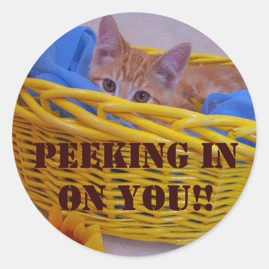 Peeking in on you!! classic round sticker