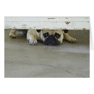 Peeking Pug Greeting Card - Blank Inside