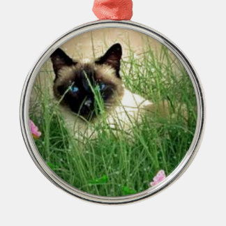 Peeking Siamese Cat, Kitty Hiding Metal Ornament