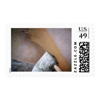 Peeling Birch Postage Stamps