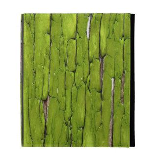 Peeling Green Paint iPad Case