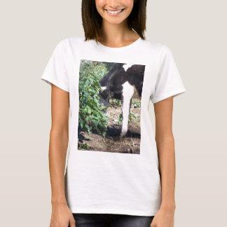 Peeping Cow T-Shirt