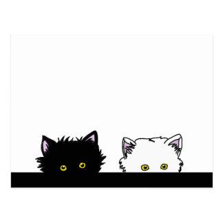 Peeping Kittens Postcard