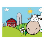 Peeping Sheep Postcard