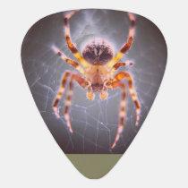 Peeping Spider Guitar Pick