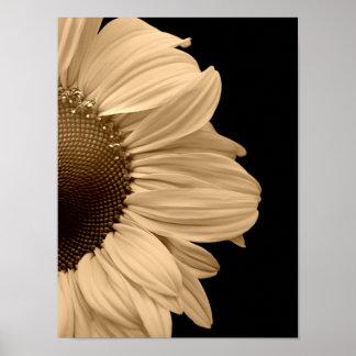 Peeping Sunflower Poster