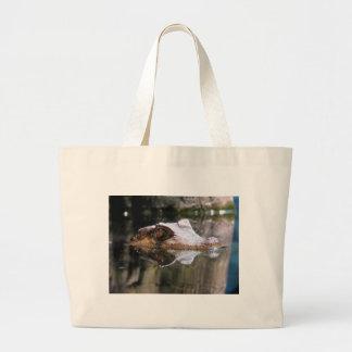 Peering Canvas Bags