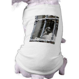 Peering Out Shirt