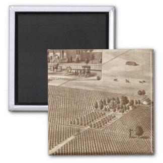 Peerless Vineyard, Hanford, Cal Fridge Magnets