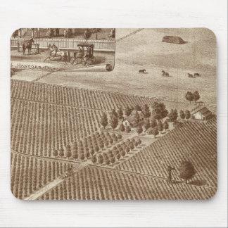 Peerless Vineyard, Hanford, Cal Mouse Pads