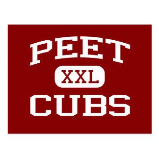 Peet - Cubs - escuela de secundaria - Conroe Tejas Tarjeta Postal