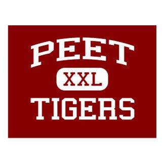 Peet - tigres - joven - Cedar Falls Iowa Postales