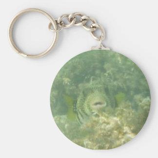Pega de los Pufferfish Llavero Redondo Tipo Pin
