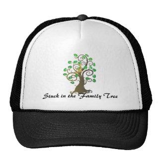Pegado en el árbol de familia gorra