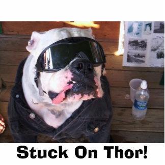 ¡Pegado en Thor! Escultura Fotográfica