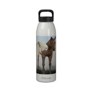 Pegasus Colt Reusable Water Bottles
