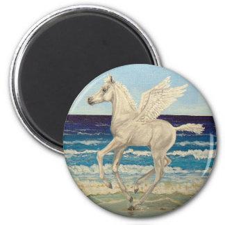 Pegasus Horse Baby on Beach Fantasy magnet