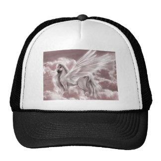 pegasus in the sky.jpg hat
