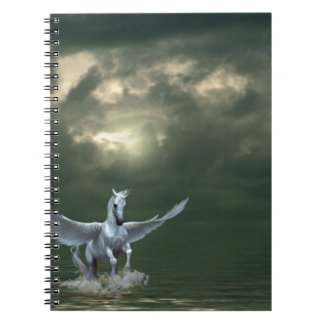 Pegasus Notebook