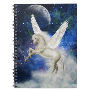 Pegasus Universe Notebook