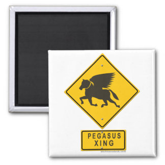 Pegasus XING Magnet