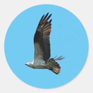 Pegatina 1 de Osprey