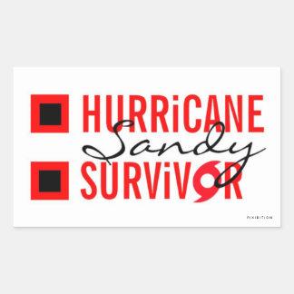 Pegatina 3 del superviviente de Sandy del huracán