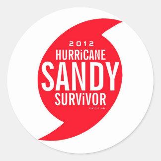 Pegatina 5 del superviviente de Sandy del huracán