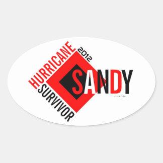 Pegatina 6 del superviviente de Sandy del huracán