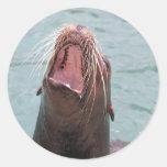 Pegatina abierto de la boca del león marino